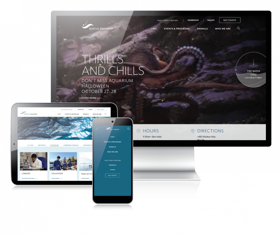 screens from aquarium website